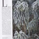 Marie Claire Maison page 5