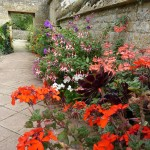 bourton-house-garden-border-created-with-pots