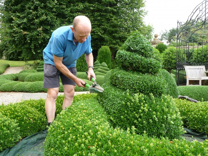 Clipping the parterre