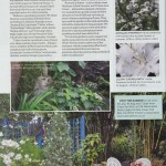 garden_answers_8