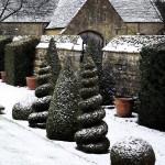 House & Garden Jan (5)
